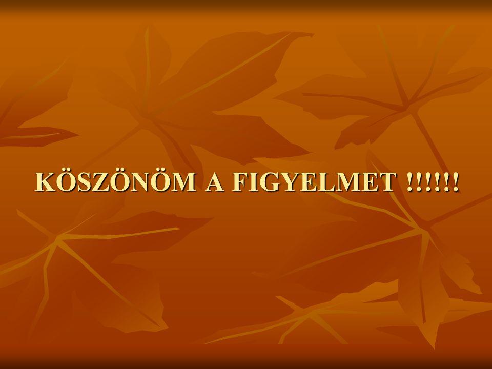 KÖSZÖNÖM A FIGYELMET !!!!!!