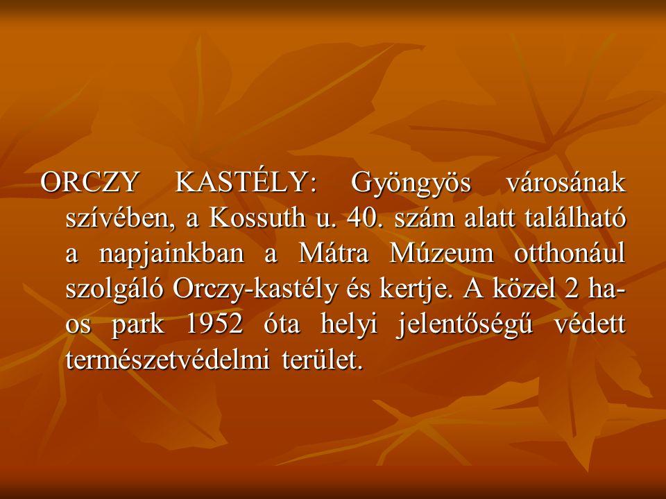 ORCZY KASTÉLY: Gyöngyös városának szívében, a Kossuth u. 40. szám alatt található a napjainkban a Mátra Múzeum otthonául szolgáló Orczy-kastély és ker