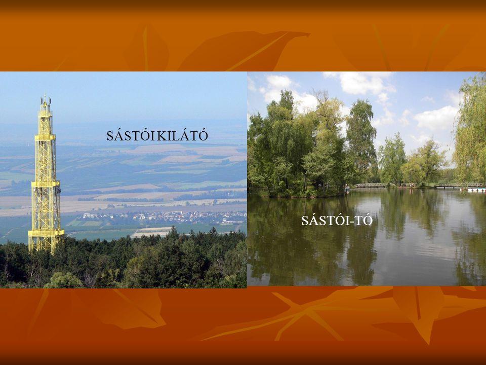 SÁSTÓI KILÁTÓ SÁSTÓI-TÓ