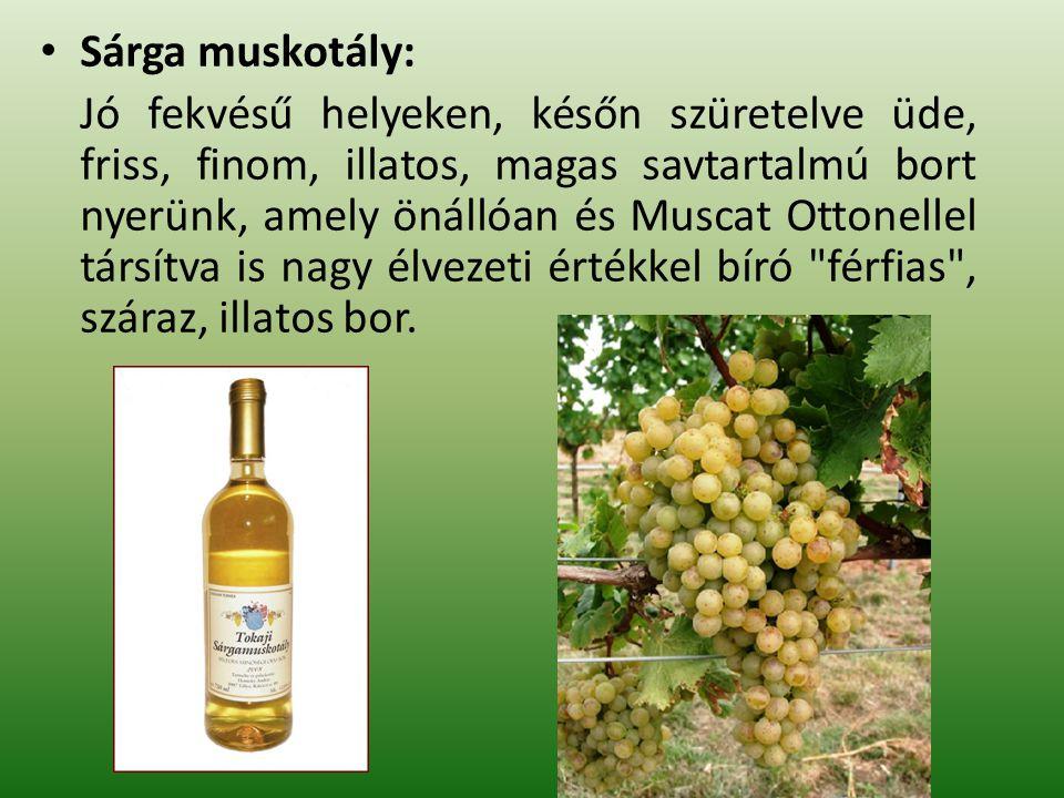 Sárga muskotály: Jó fekvésű helyeken, későn szüretelve üde, friss, finom, illatos, magas savtartalmú bort nyerünk, amely önállóan és Muscat Ottonellel