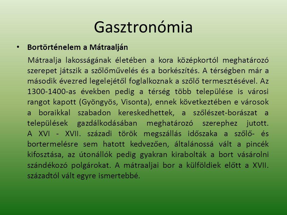 Gasztronómia Bortörténelem a Mátraalján Mátraalja lakosságának életében a kora középkortól meghatározó szerepet játszik a szőlőművelés és a borkészíté