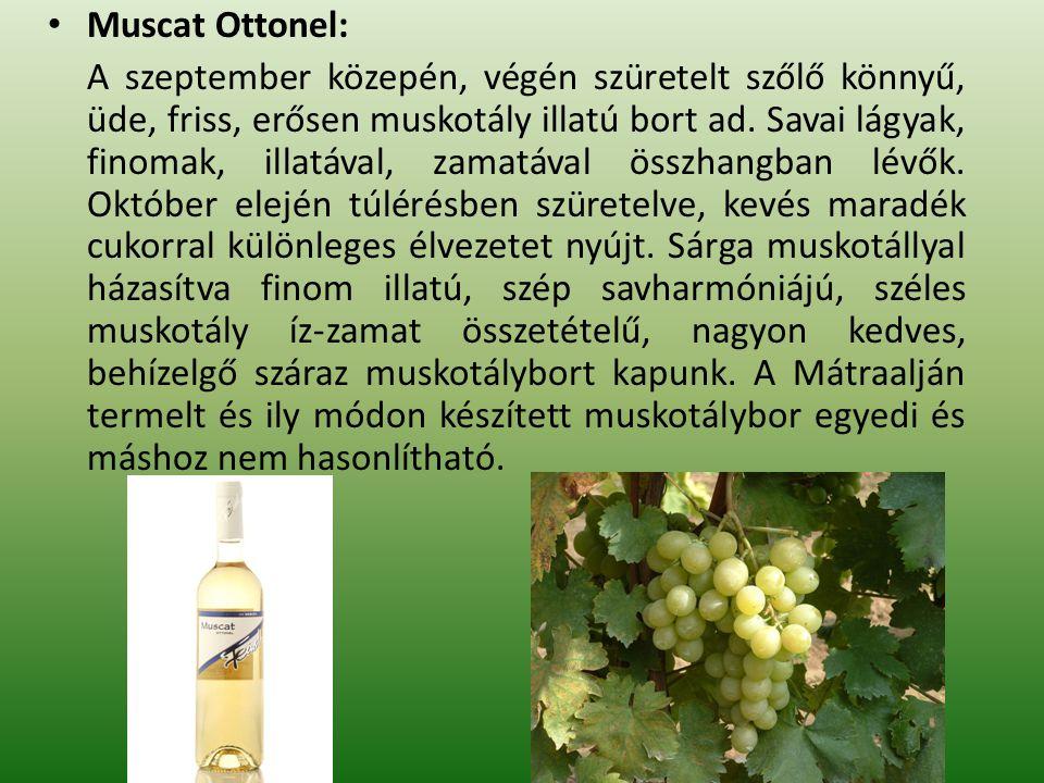 Muscat Ottonel: A szeptember közepén, végén szüretelt szőlő könnyű, üde, friss, erősen muskotály illatú bort ad. Savai lágyak, finomak, illatával, zam