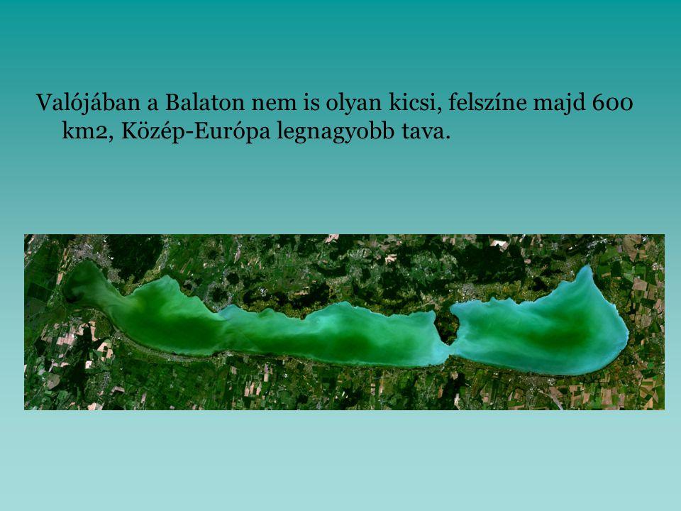 Valójában a Balaton nem is olyan kicsi, felszíne majd 600 km2, Közép-Európa legnagyobb tava..