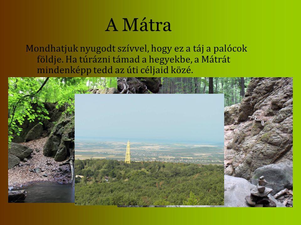 A Mátra Mondhatjuk nyugodt szívvel, hogy ez a táj a palócok földje. Ha túrázni támad a hegyekbe, a Mátrát mindenképp tedd az úti céljaid közé.