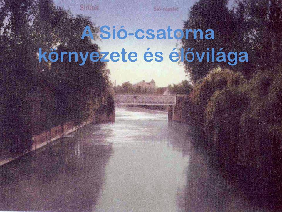 Története röviden A Sió – csatorna a Balaton vizét engedi le a Dunába.