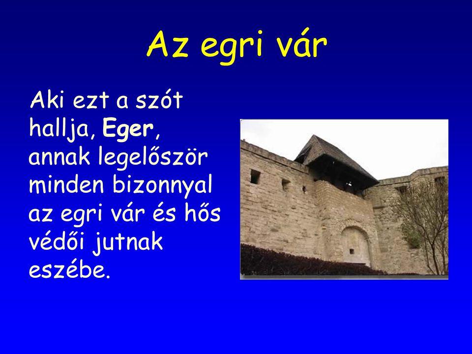 Az egri vár Aki ezt a szót hallja, Eger, annak legelőször minden bizonnyal az egri vár és hős védői jutnak eszébe.
