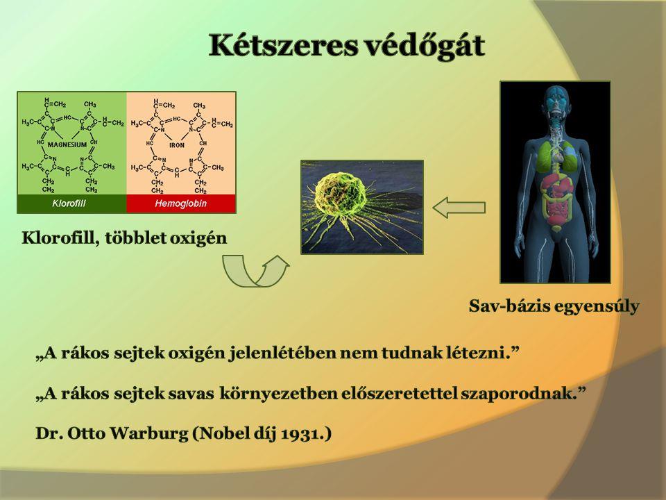 Arany középút Egészséges egyensúlyt teremt a modern medicina és a komplementer eszközök között.