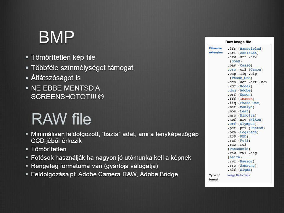"""BMP RAW file  Minimálisan feldolgozott, """"tiszta"""" adat, ami a fényképezőgép CCD-jéből érkezik  Tömörítetlen  Fotósok használják ha nagyon jó utómunk"""