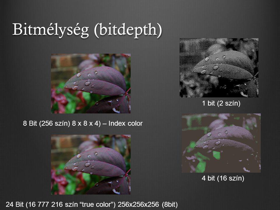 "Bitmélység (bitdepth) 8 Bit (256 szín) 8 x 8 x 4) – Index color 24 Bit (16 777 216 szín ""true color"") 256x256x256 (8bit) 4 bit (16 szín) 1 bit (2 szín"