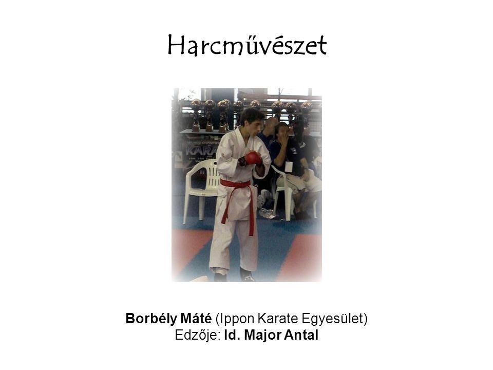 Harcm ű vészet Borbély Máté (Ippon Karate Egyesület) Edzője: Id. Major Antal