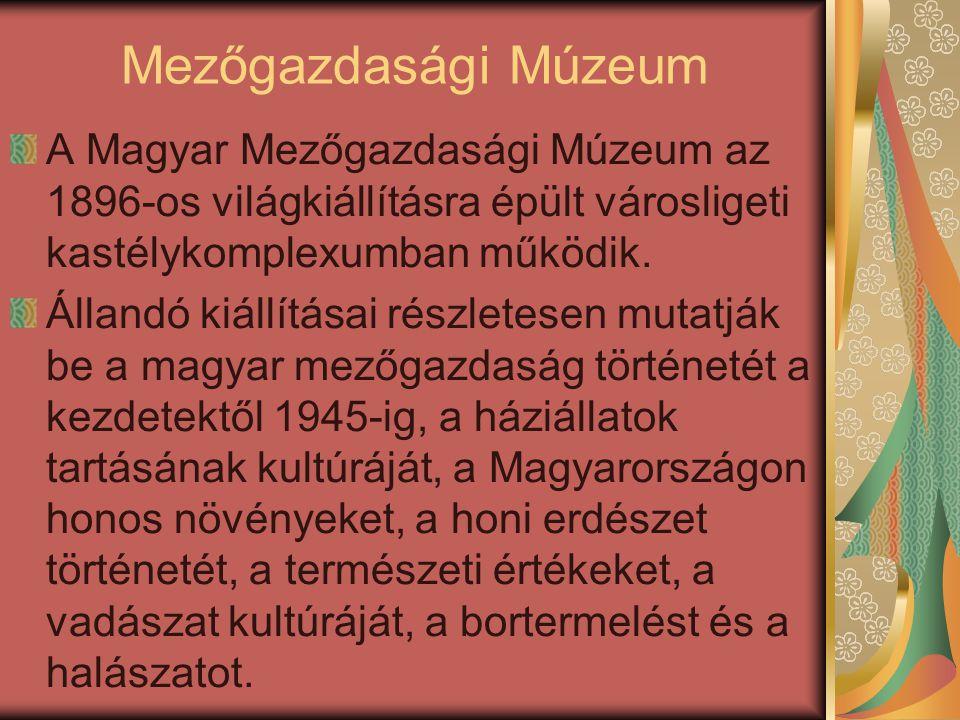 Mezőgazdasági Múzeum A Magyar Mezőgazdasági Múzeum az 1896-os világkiállításra épült városligeti kastélykomplexumban működik. Állandó kiállításai rész