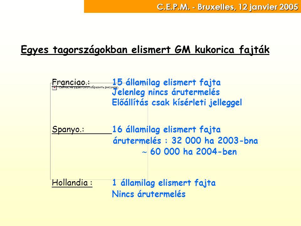 C.E.P.M. - Bruxelles, 12 janvier 2005 C.E.P.M.