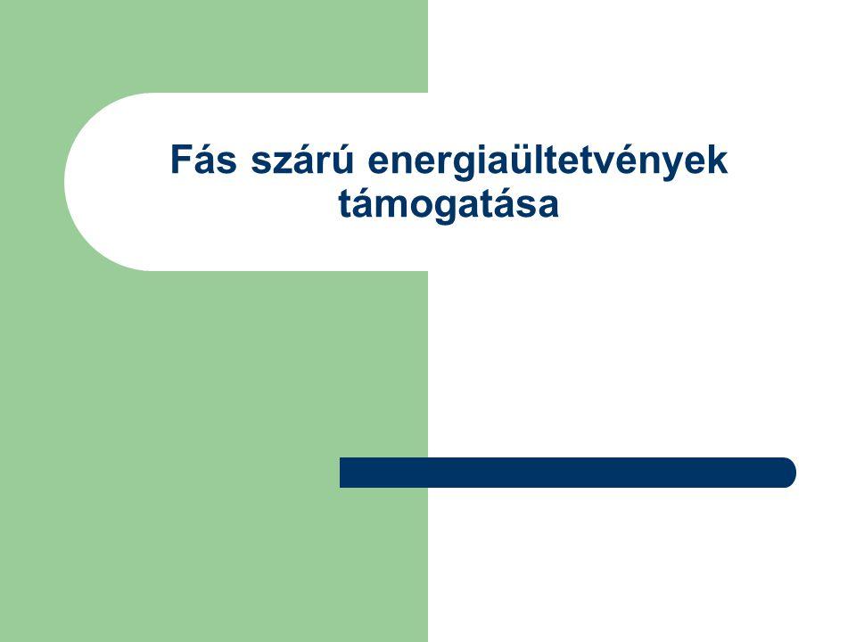Fás szárú energiaültetvények támogatása