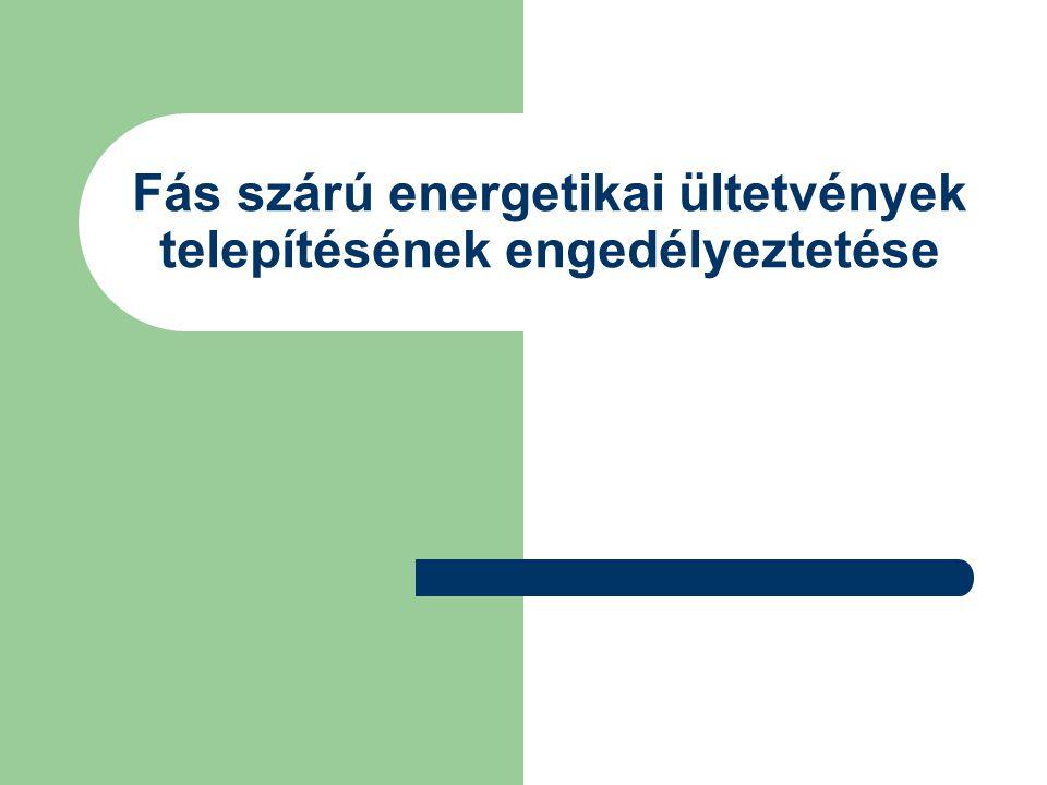 Fás szárú energetikai ültetvények telepítésének engedélyeztetése