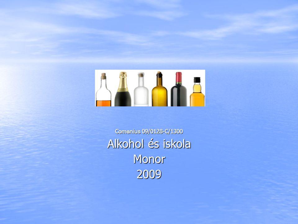 Comenius 09/0128-C/1300 Alkohol és iskola Monor2009