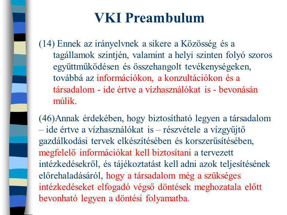 VKI Preambulum (14) Ennek az irányelvnek a sikere a Közösség és a tagállamok szintjén, valamint a helyi szinten folyó szoros együttműködésen és összeh