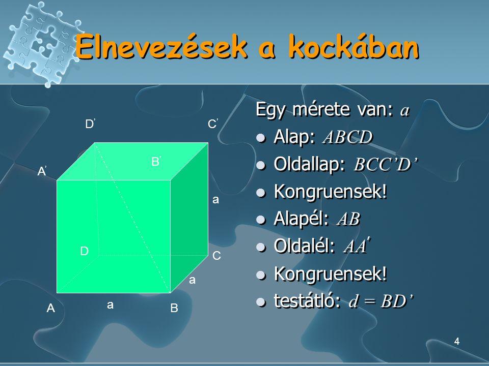 4 Elnevezések a kockában Egy mérete van: a Alap: ABCD Oldallap: BCC'D' Kongruensek.