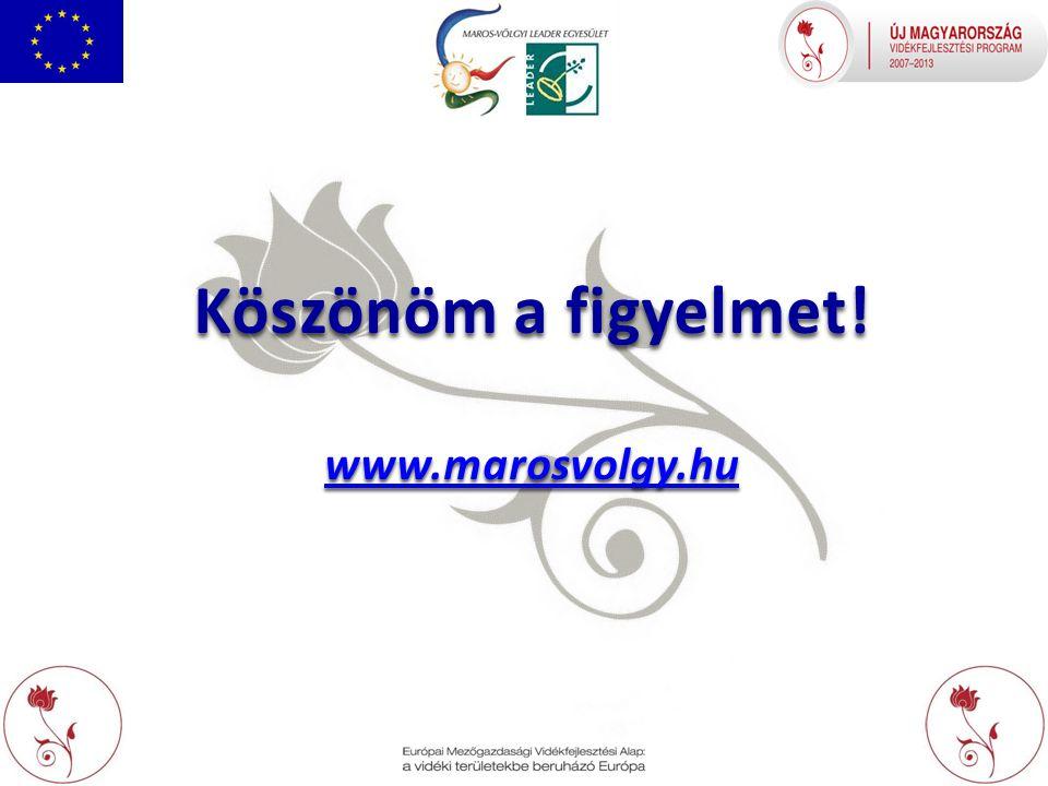 Köszönöm a figyelmet! www.marosvolgy.hu