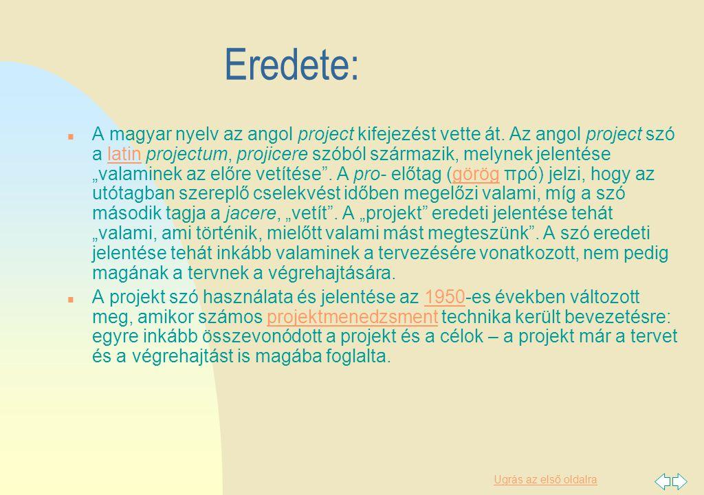 Ugrás az első oldalra Projekttípusok: n A projektek kategorizálása többféle szempont alapján lehetséges.