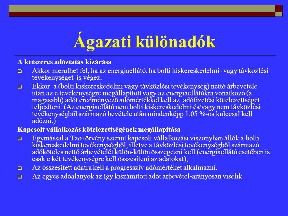 Ágazati különadók A kétszeres adóztatás kizárása  Akkor merülhet fel, ha az energiaellátó, ha bolti kiskereskedelmi- vagy távközlési tevékenységet is végez.