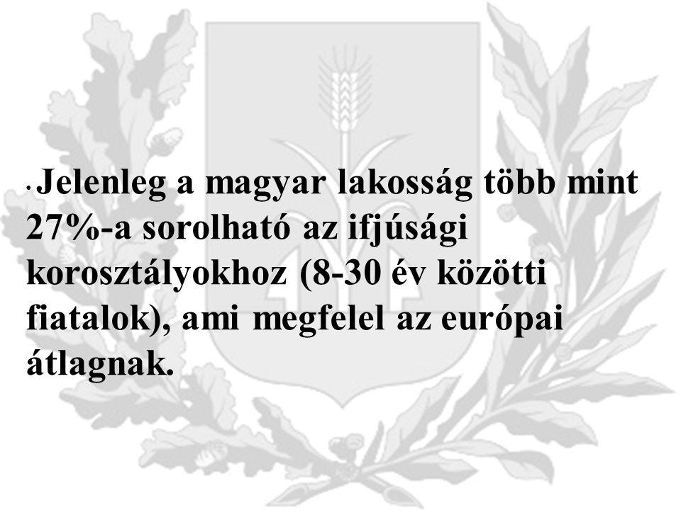 Jelenleg a magyar lakosság több mint 27%-a sorolható az ifjúsági korosztályokhoz (8-30 év közötti fiatalok), ami megfelel az európai átlagnak.