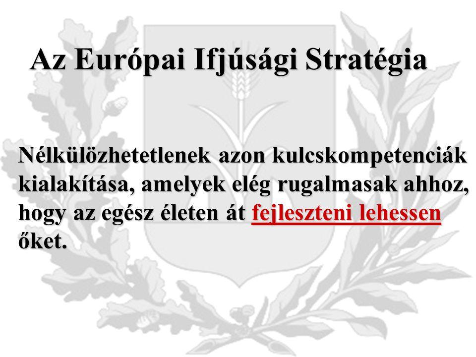 Az Európai Ifjúsági Stratégia Nélkülözhetetlenek azon kulcskompetenciák kialakítása, amelyek elég rugalmasak ahhoz, hogy az egész életen át fejleszteni lehessen őket.