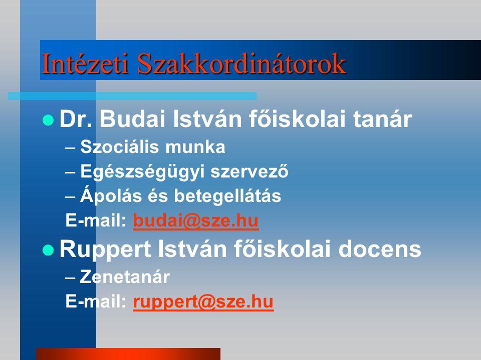 Intézeti szakkoordinátorok Jedlik Ányos Intézet Dr.