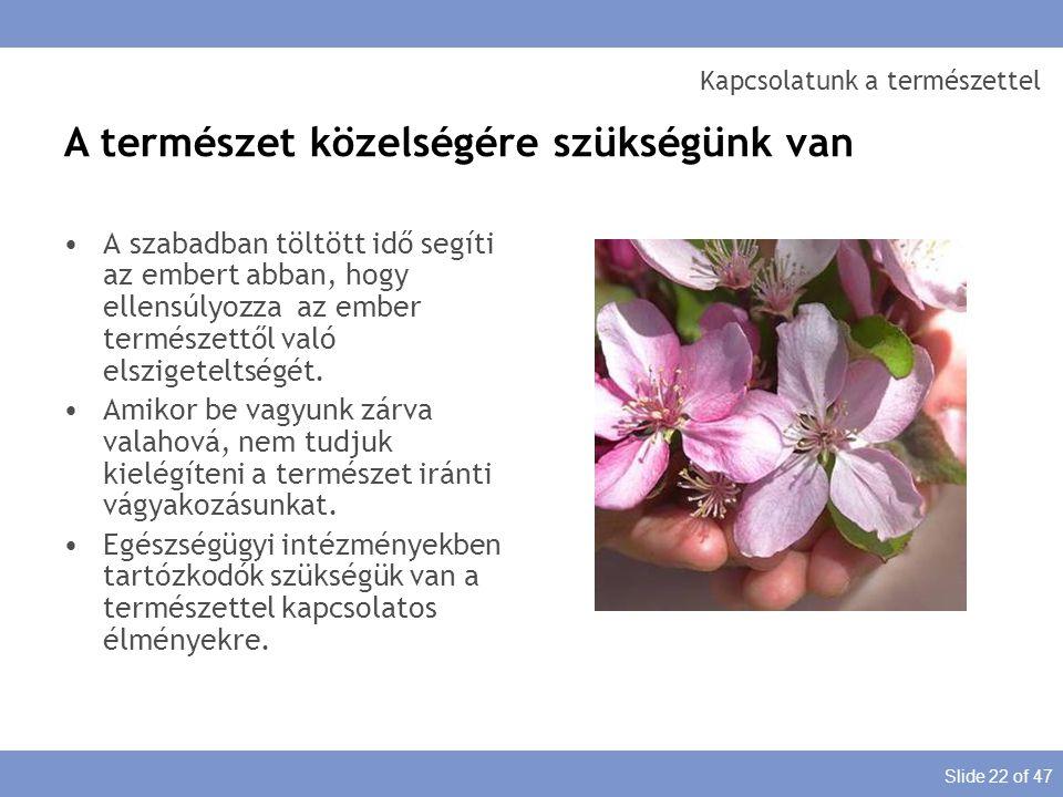 Slide 22 of 47 Kapcsolatunk a természettel A szabadban töltött idő segíti az embert abban, hogy ellensúlyozza az ember természettől való elszigeteltsé