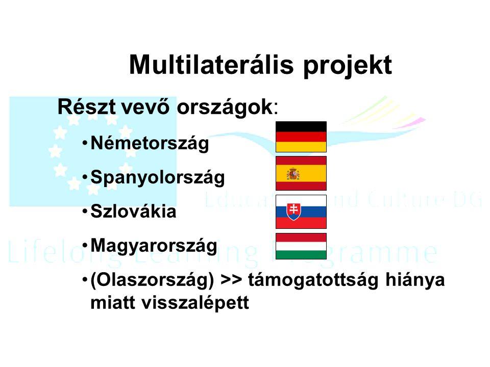 Multilaterális projekt Részt vevő országok: Németország Spanyolország Szlovákia Magyarország (Olaszország) >> támogatottság hiánya miatt visszalépett