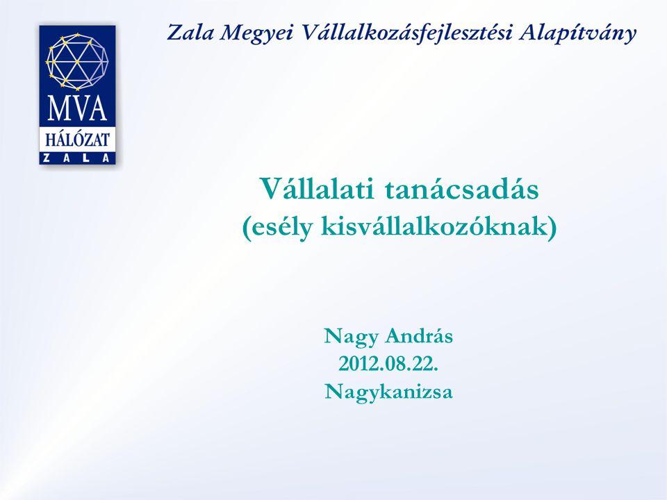 Vállalati tanácsadás (esély kisvállalkozóknak) Nagy András 2012.08.22. Nagykanizsa