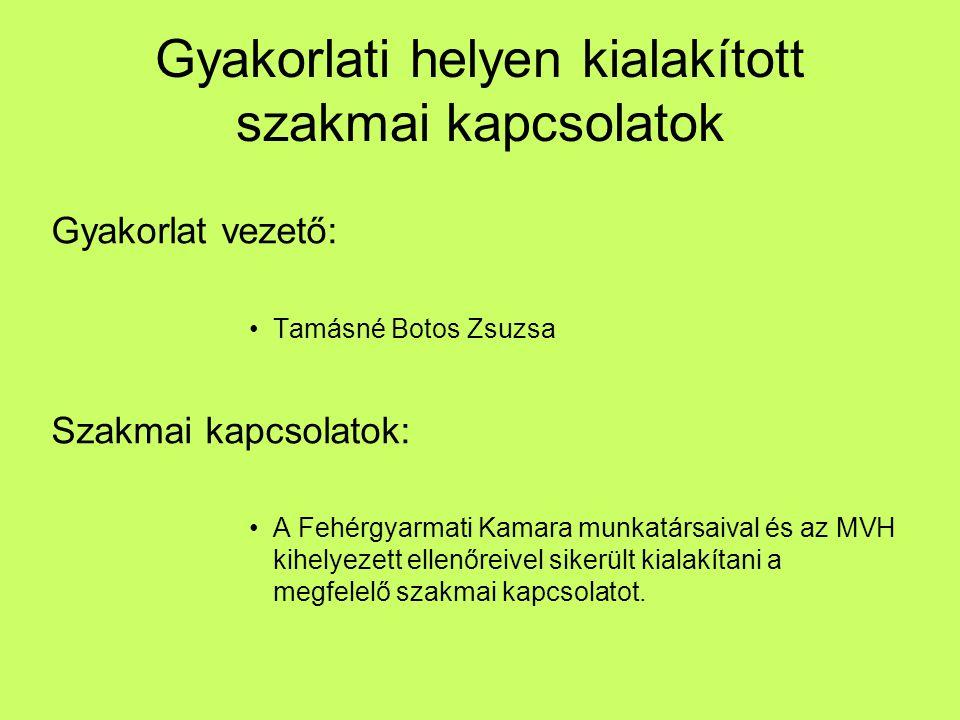 Gyakorlati helyen kialakított szakmai kapcsolatok Gyakorlat vezető: Tamásné Botos Zsuzsa Szakmai kapcsolatok: A Fehérgyarmati Kamara munkatársaival és
