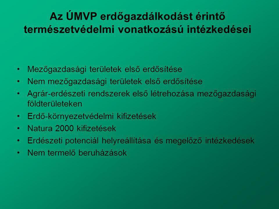 Az ÚMVP erdőgazdálkodást érintő természetvédelmi vonatkozású intézkedései Mezőgazdasági területek első erdősítése Nem mezőgazdasági területek első erdősítése Agrár-erdészeti rendszerek első létrehozása mezőgazdasági földterületeken Erdő-környezetvédelmi kifizetések Natura 2000 kifizetések Erdészeti potenciál helyreállítása és megelőző intézkedések Nem termelő beruházások