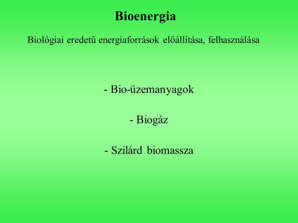 Bioenergia Biológiai eredetű energiaforrások előállítása, felhasználása - Bio-üzemanyagok - Biogáz - Szilárd biomassza
