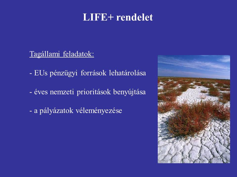 Tagállami feladatok: - EUs pénzügyi források lehatárolása - éves nemzeti prioritások benyújtása - a pályázatok véleményezése LIFE+ rendelet