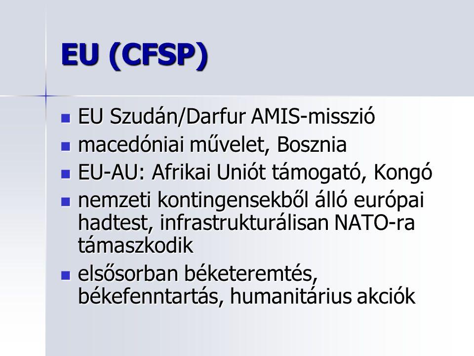 EU (CFSP) EU Szudán/Darfur AMIS-misszió EU Szudán/Darfur AMIS-misszió macedóniai művelet, Bosznia macedóniai művelet, Bosznia EU-AU: Afrikai Uniót támogató, Kongó EU-AU: Afrikai Uniót támogató, Kongó nemzeti kontingensekből álló európai hadtest, infrastrukturálisan NATO-ra támaszkodik nemzeti kontingensekből álló európai hadtest, infrastrukturálisan NATO-ra támaszkodik elsősorban béketeremtés, békefenntartás, humanitárius akciók elsősorban béketeremtés, békefenntartás, humanitárius akciók