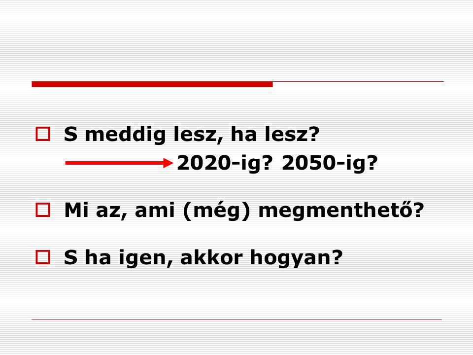 S meddig lesz, ha lesz. 2020-ig. 2050-ig.  Mi az, ami (még) megmenthető.