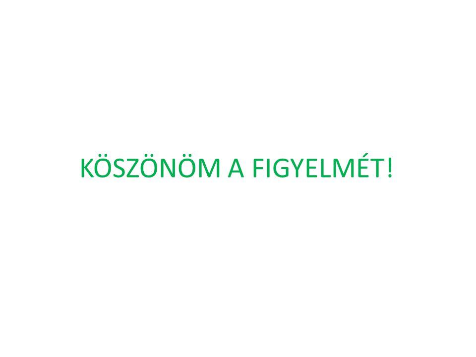KÖSZÖNÖM A FIGYELMÉT!