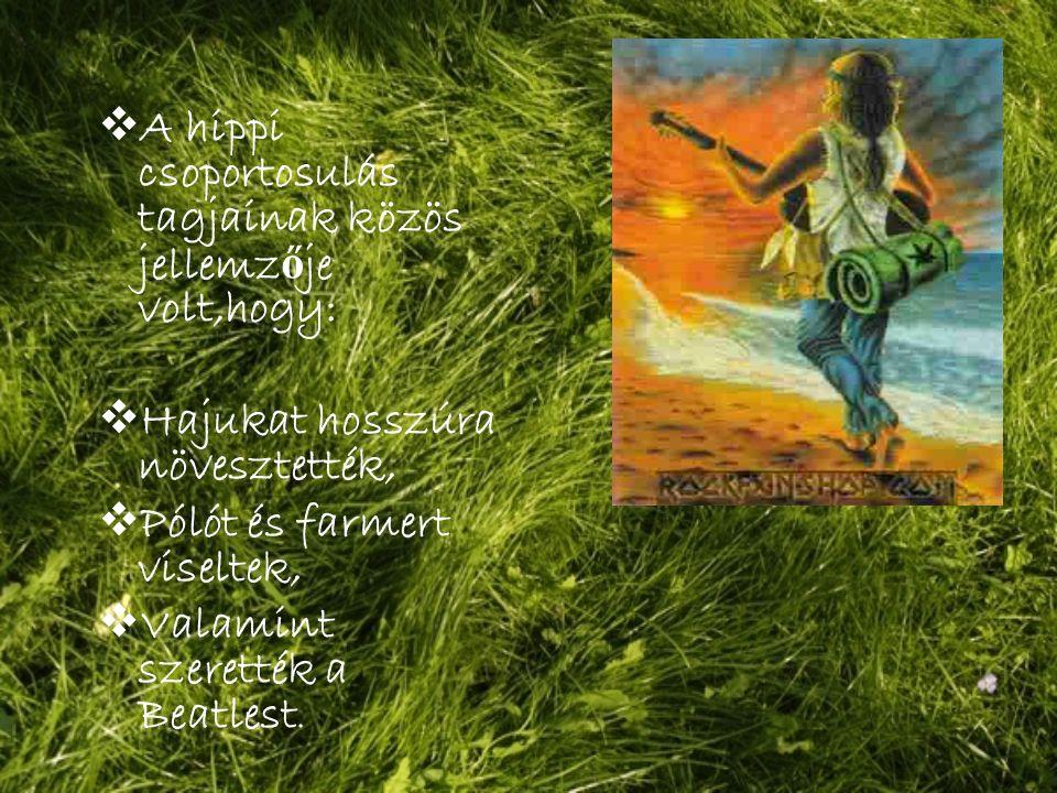  A hippi csoportosulás tagjainak közös jellemz ő je volt,hogy:  Hajukat hosszúra növesztették,  Pólót és farmert viseltek,  Valamint szerették a Beatlest.