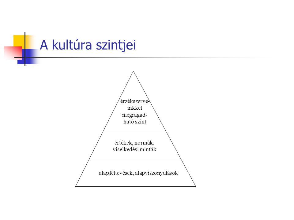 A kultúra szintjei alapfeltevések, alapviszonyulások értékek, normák, viselkedési minták érzékszerve- inkkel megragad- ható szint