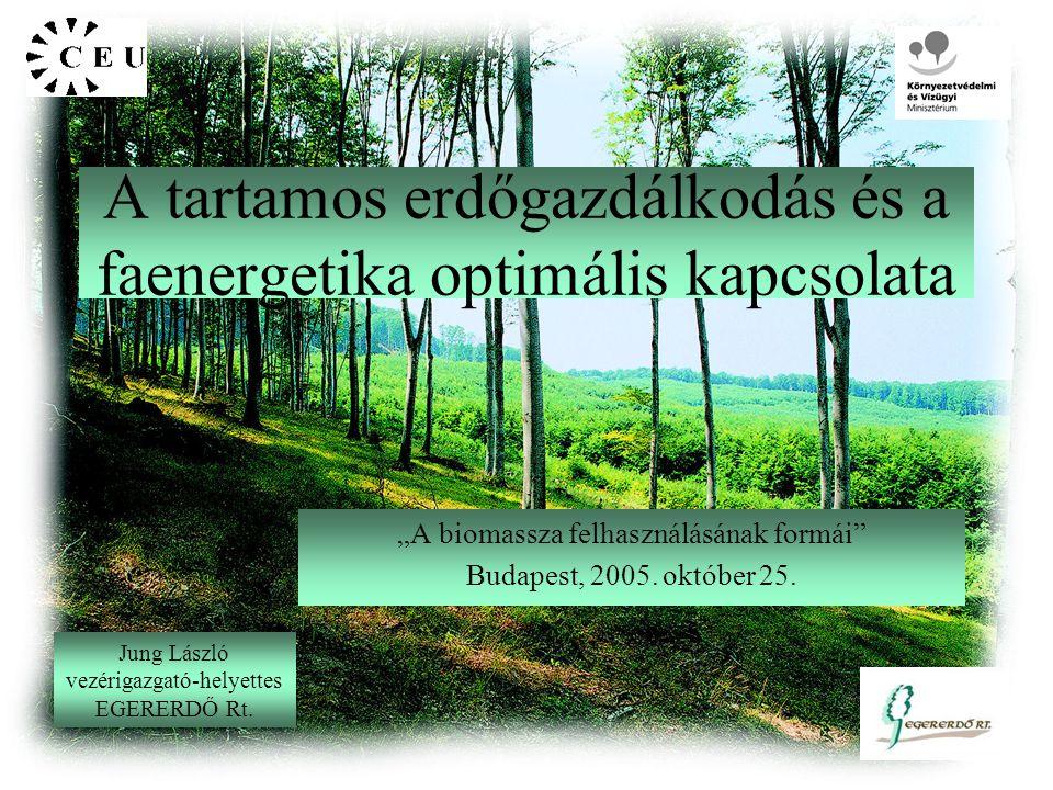 """A tartamos erdőgazdálkodás és a faenergetika optimális kapcsolata """"A biomassza felhasználásának formái Budapest, 2005."""