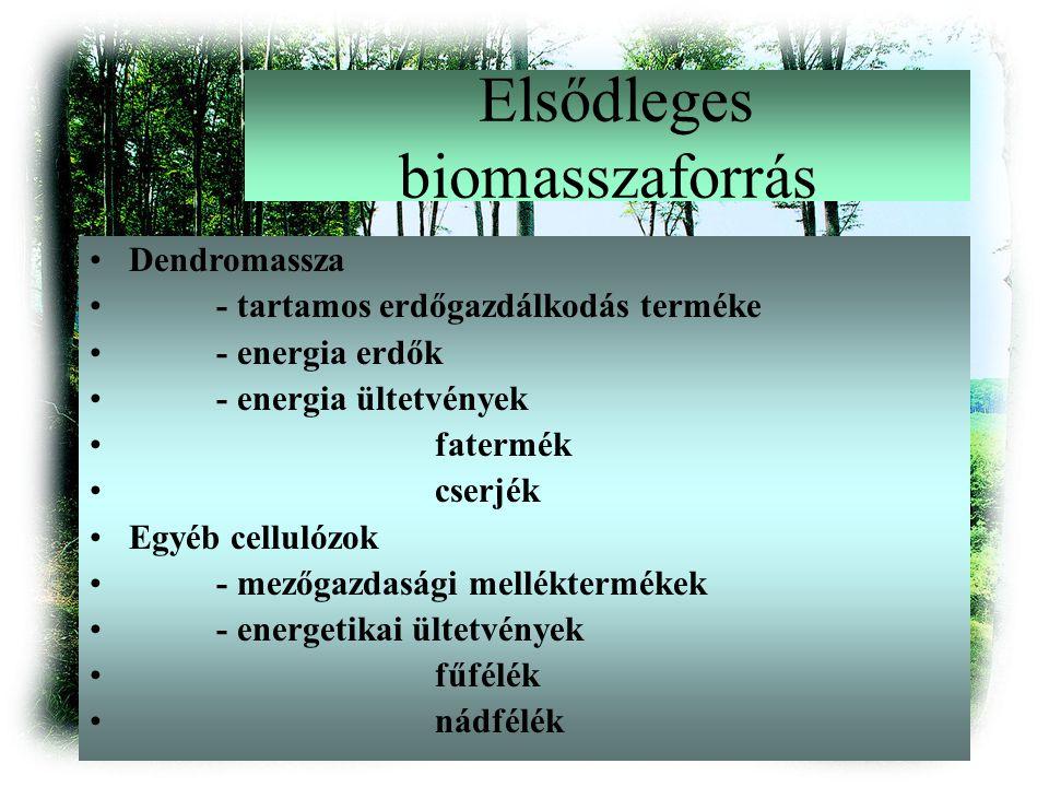Elsődleges biomasszaforrás Dendromassza - tartamos erdőgazdálkodás terméke - energia erdők - energia ültetvények fatermék cserjék Egyéb cellulózok - mezőgazdasági melléktermékek - energetikai ültetvények fűfélék nádfélék