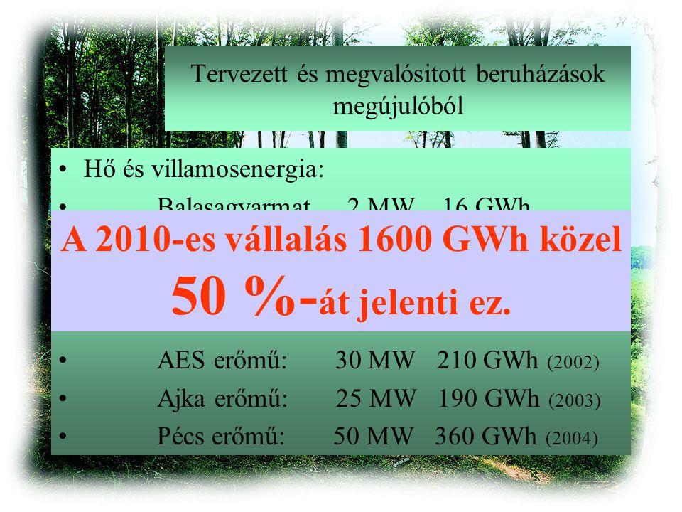 Tervezett és megvalósitott beruházások megújulóból Hő és villamosenergia: Balasagyarmat 2 MW 16 GWh Szentendre 1 MW 8 GWh Erőművi áramtermelés: AES erőmű: 30 MW 210 GWh (2002) Ajka erőmű: 25 MW 190 GWh (2003) Pécs erőmű: 50 MW 360 GWh (2004) A 2010-es vállalás 1600 GWh közel 50 %- át jelenti ez.