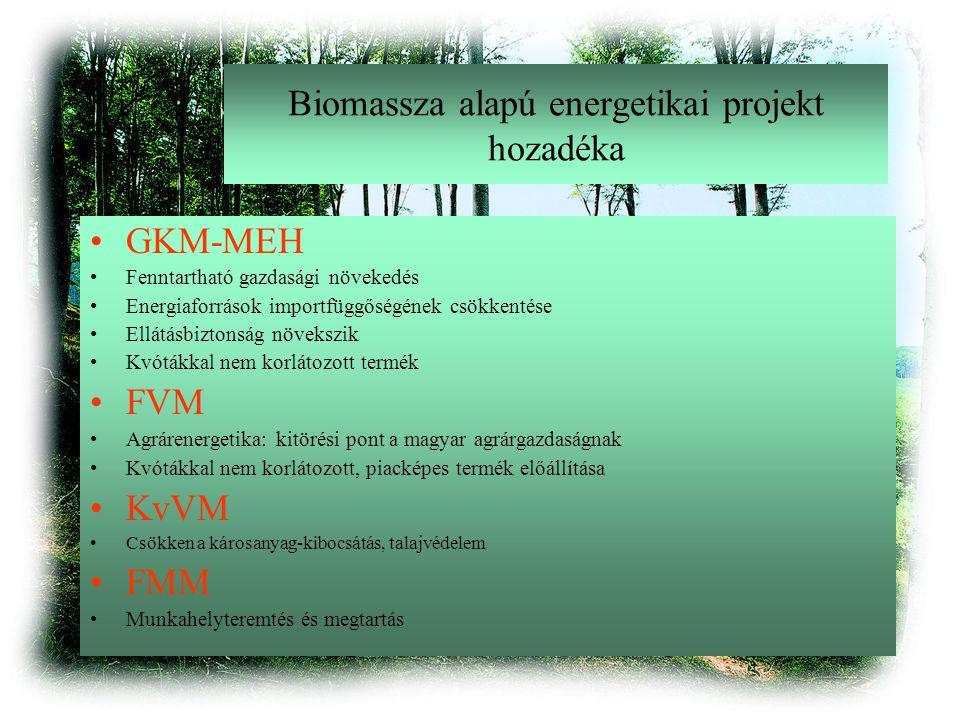 Biomassza alapú energetikai projekt hozadéka GKM-MEH Fenntartható gazdasági növekedés Energiaforrások importfüggőségének csökkentése Ellátásbiztonság növekszik Kvótákkal nem korlátozott termék FVM Agrárenergetika: kitörési pont a magyar agrárgazdaságnak Kvótákkal nem korlátozott, piacképes termék előállítása KvVM Csökken a károsanyag-kibocsátás, talajvédelem FMM Munkahelyteremtés és megtartás