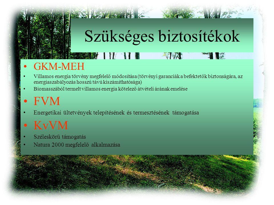 Szükséges biztosítékok GKM-MEH Villamos energia törvény megfelelő módosítása (törvényi garanciák a befektetők biztonságára, az energiaszabályozás hosszú távú kiszámíthatósága) Biomasszából termelt villamos energia kötelező átvételi árának emelése FVM Energetikai ültetvények telepítésének és termesztésének támogatása KvVM Széleskörű támogatás Natura 2000 megfelelő alkalmazása