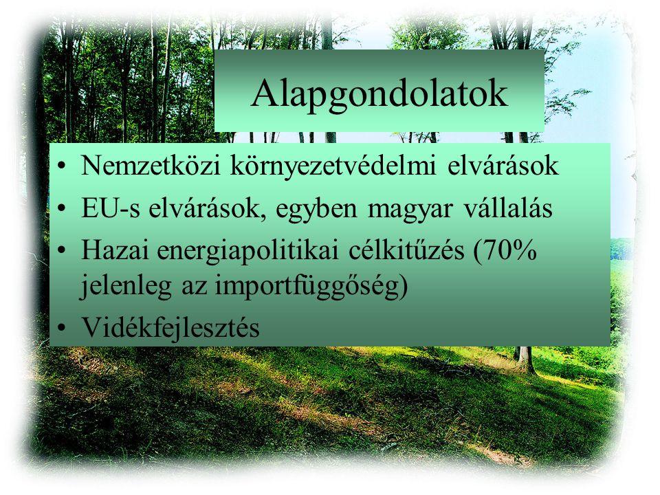 Alapgondolatok Nemzetközi környezetvédelmi elvárások EU-s elvárások, egyben magyar vállalás Hazai energiapolitikai célkitűzés (70% jelenleg az importfüggőség) Vidékfejlesztés