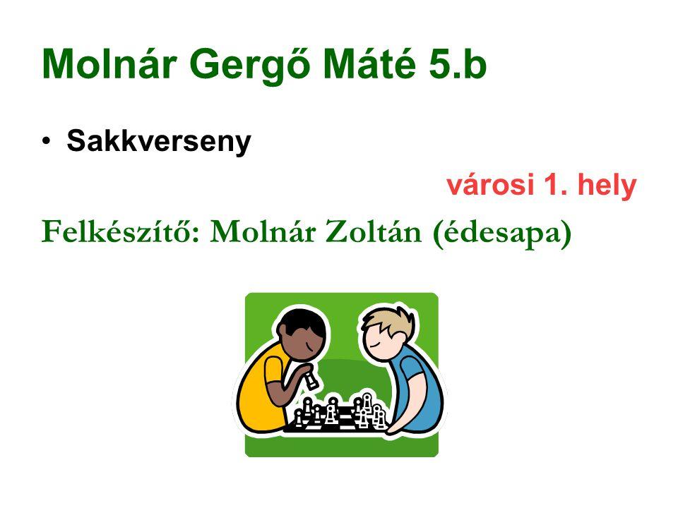 Molnár Gergő Máté 5.b Sakkverseny városi 1. hely Felkészítő: Molnár Zoltán (édesapa)