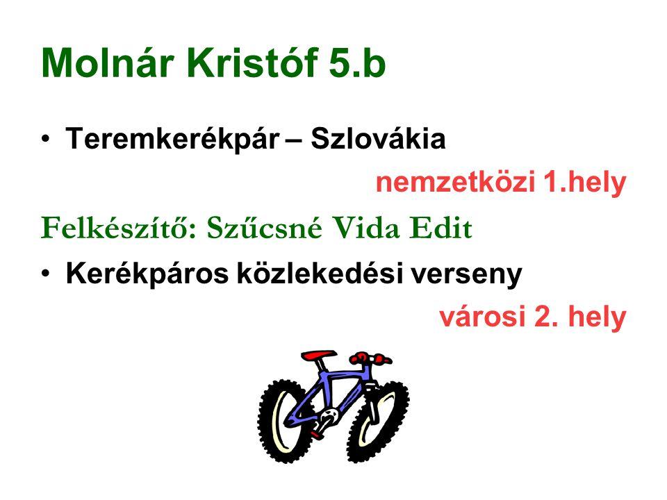 Molnár Kristóf 5.b Teremkerékpár – Szlovákia nemzetközi 1.hely Felkészítő: Szűcsné Vida Edit Kerékpáros közlekedési verseny városi 2. hely
