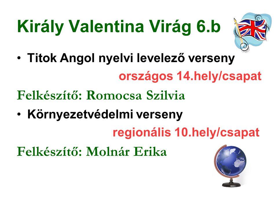 Király Valentina Virág 6.b Titok Angol nyelvi levelező verseny országos 14.hely/csapat Felkészítő: Romocsa Szilvia Környezetvédelmi verseny regionális