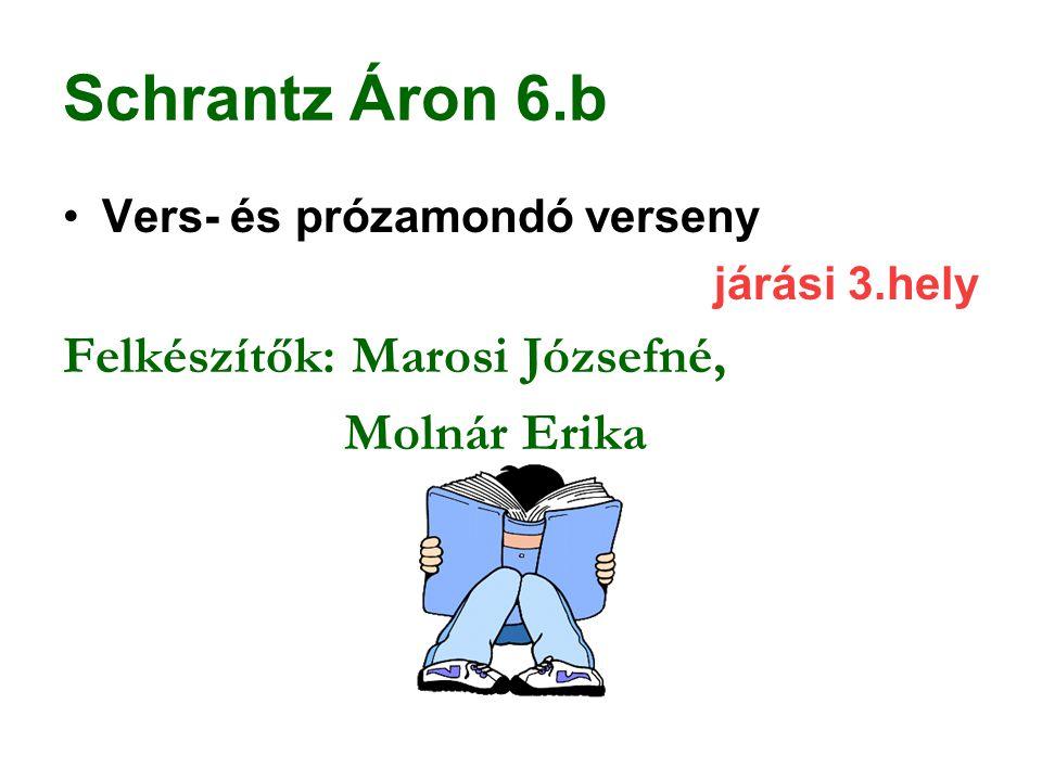 Schrantz Áron 6.b Vers- és prózamondó verseny járási 3.hely Felkészítők: Marosi Józsefné, Molnár Erika