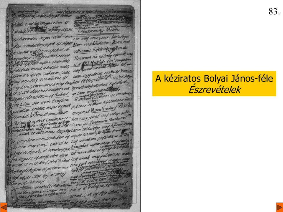 A kéziratos Bolyai János-féle Észrevételek 83.